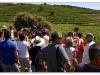 2012_06_23_oenotourisme_collioure_470-version-2