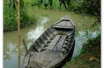 Can Thô – Barque