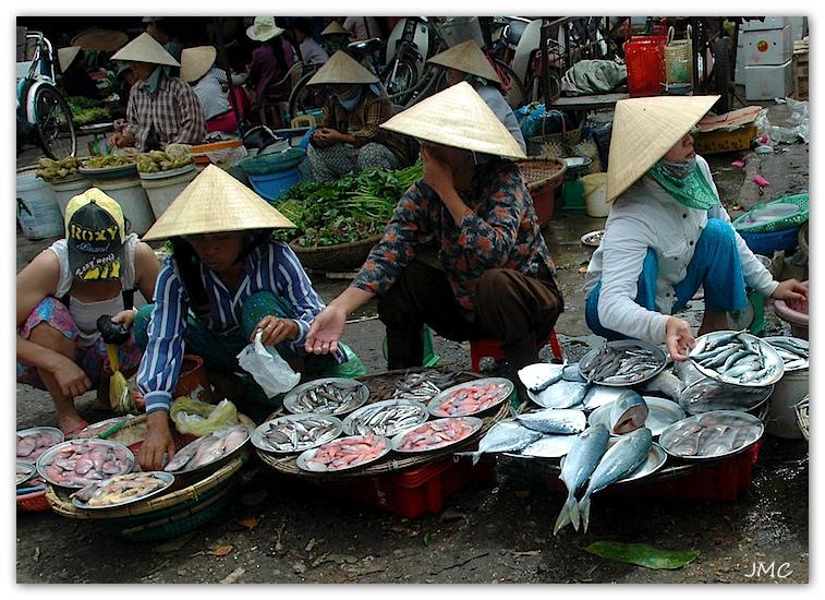 Huê – Marché aux poissons photo