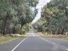 2011_01_15_Australie-439