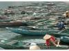 2009_02_23_Vietnam_033